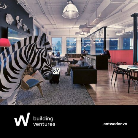 Zebra's: de verantwoordelijke ventures